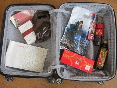 RICARDO TROLLEY20スーツケース体験記3