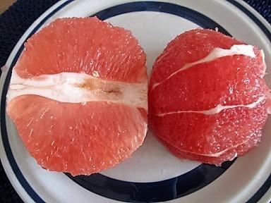 ルビーグレープフルーツ1