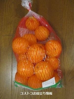 ネーブルオレンジ2